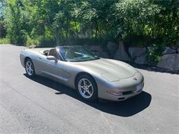 2001 Chevrolet Corvette (CC-1386758) for sale in Annandale, Minnesota