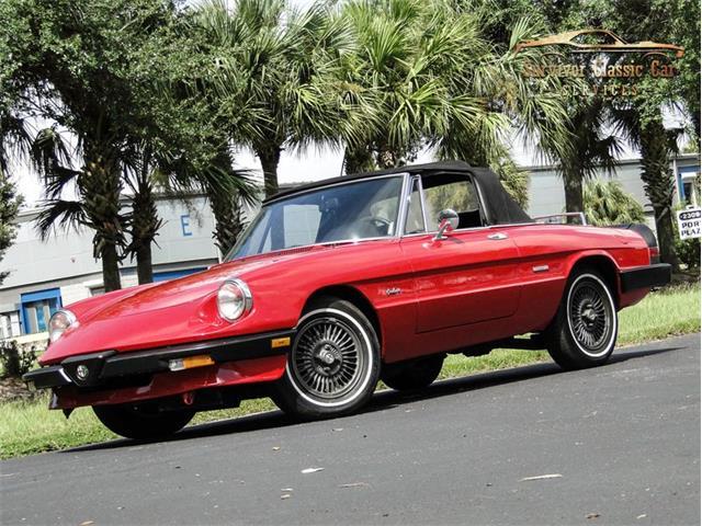 1987 Alfa Romeo Spider (CC-1386771) for sale in Palmetto, Florida