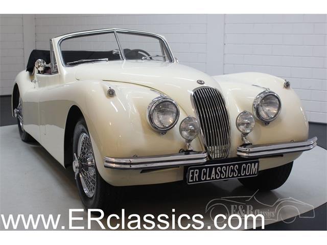 1954 Jaguar XK120 (CC-1380708) for sale in Waalwijk, Noord Brabant