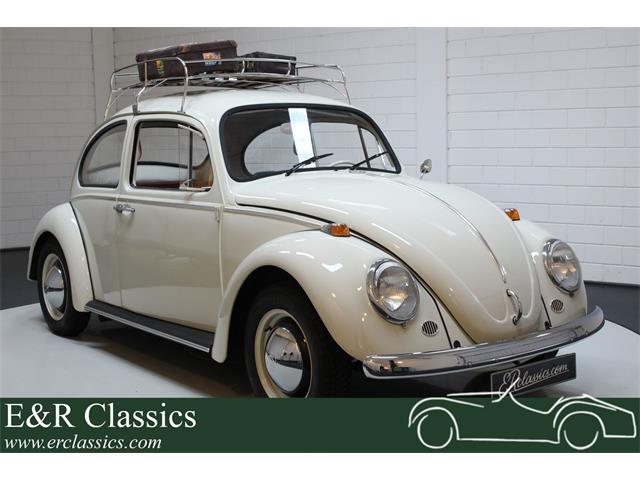 1965 Volkswagen Beetle (CC-1380732) for sale in Waalwijk, Noord Brabant