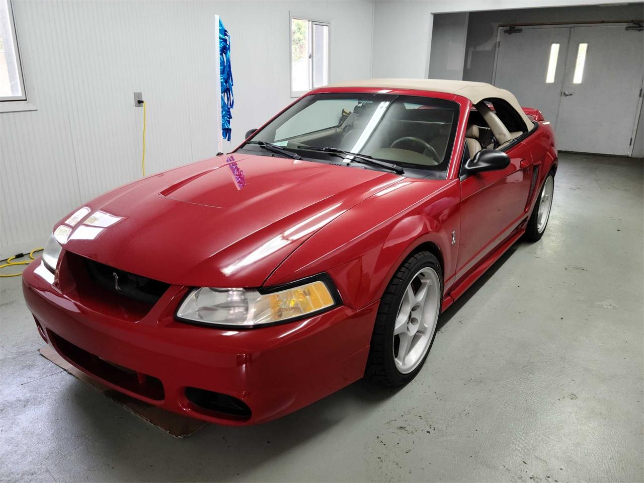 1999 Ford Mustang SVT Cobra (CC-1387925) for sale in Colorado Springs, Colorado