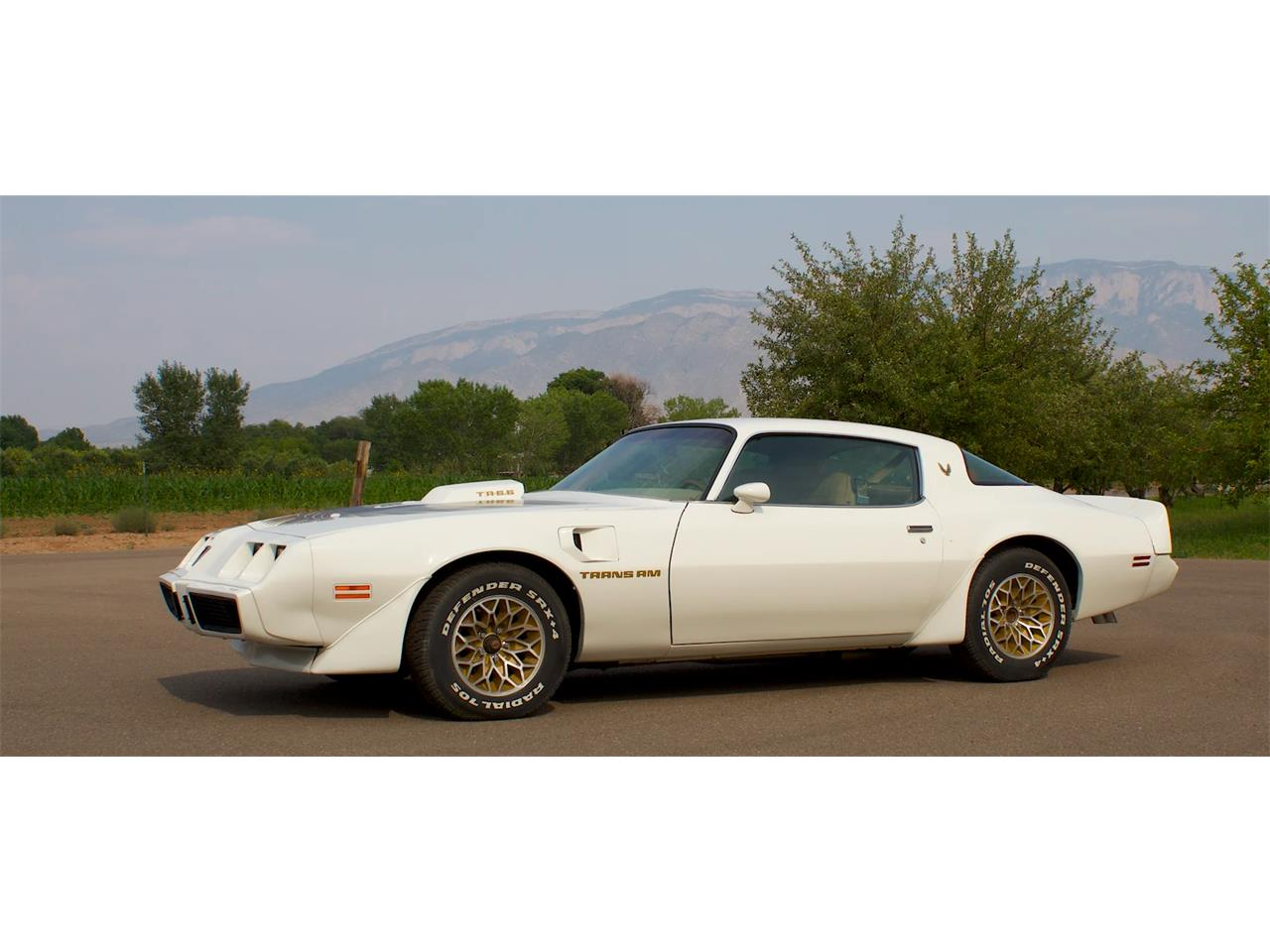 1979 Pontiac Firebird Trans Am (CC-1387943) for sale in Corrales, New Mexico