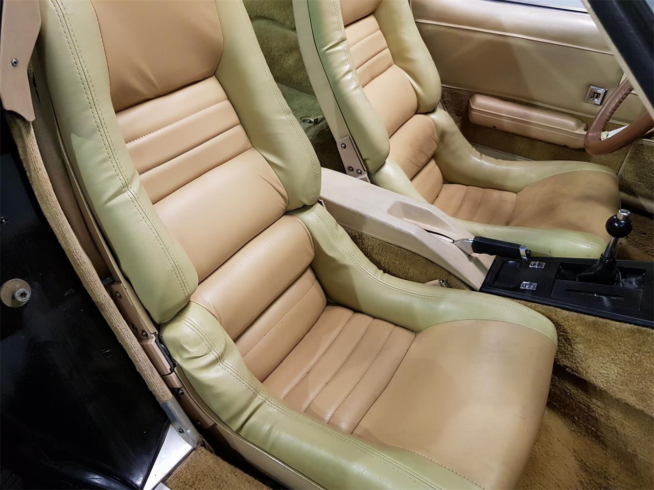 1979 Chevrolet Corvette (CC-1380827) for sale in Waalwijk, Noord-Brabant