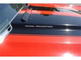 1971 Chevrolet El Camino (CC-1388288) for sale in Cadillac, Michigan