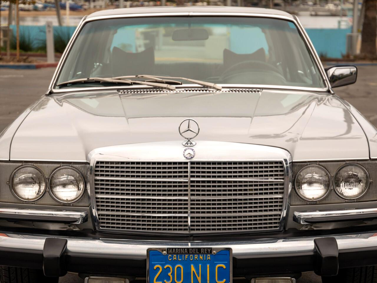 1975 Mercedes-Benz 450SEL (CC-1388605) for sale in Marina Del Rey, California