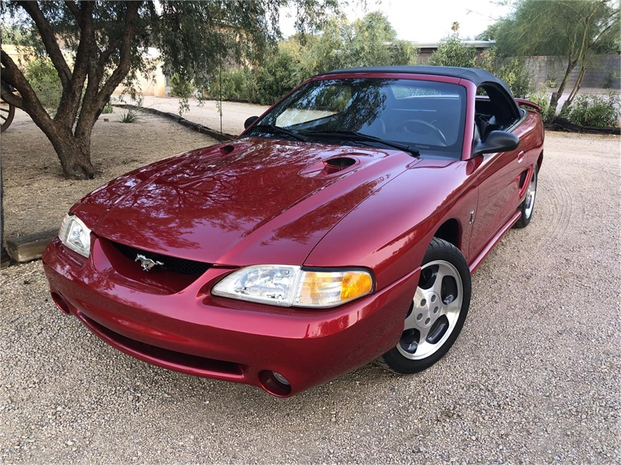 1996 Ford Mustang Cobra (CC-1389029) for sale in Scottsdale, Arizona
