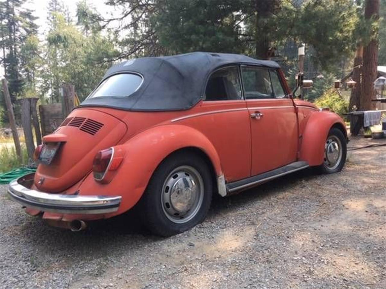 1972 Volkswagen Beetle (CC-1389185) for sale in Cadillac, Michigan