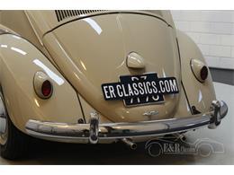 1959 Volkswagen Beetle (CC-1389305) for sale in Waalwijk, Noord Brabant