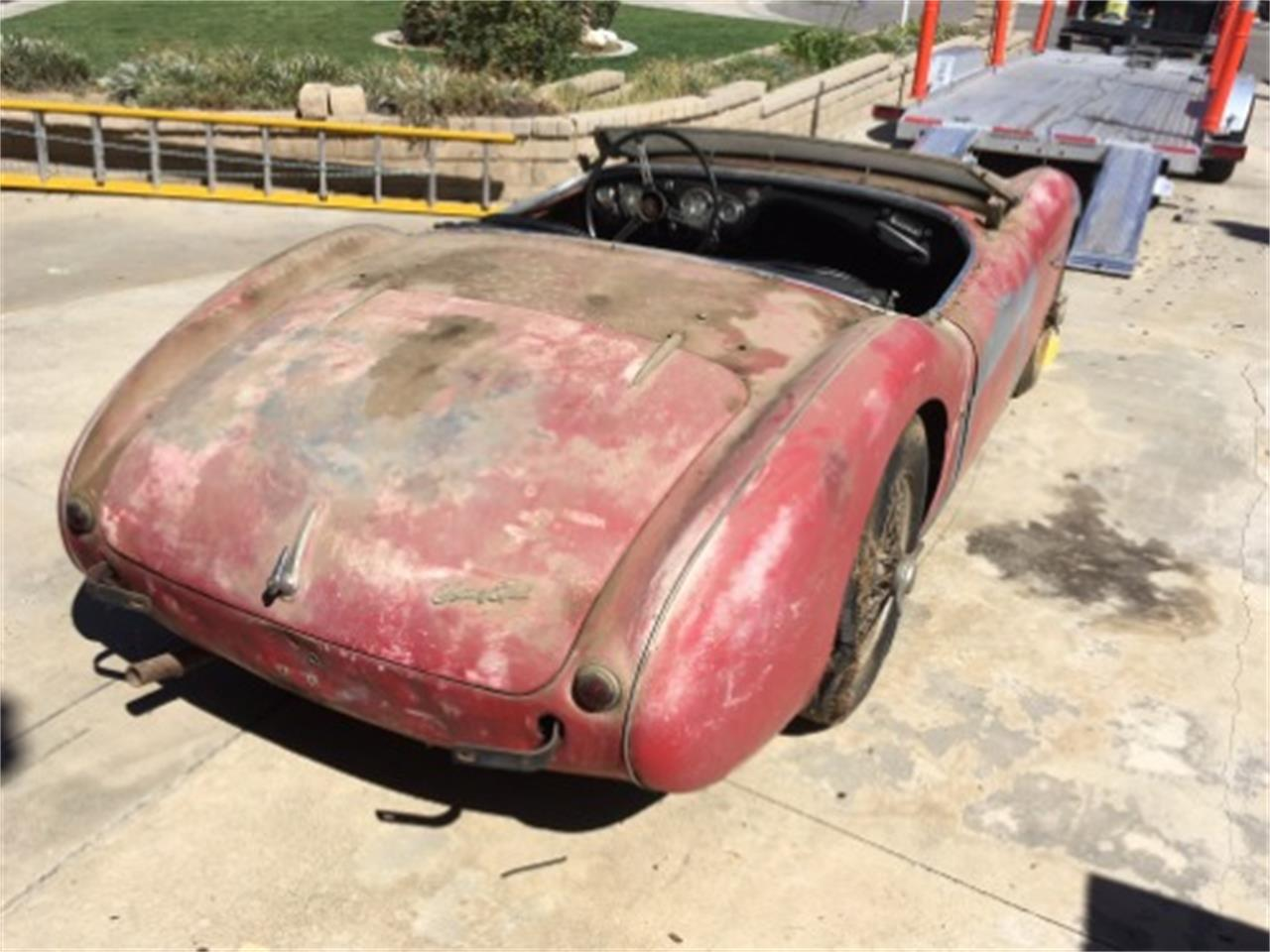1954 Austin-Healey 100-4 (CC-1389495) for sale in Astoria, New York
