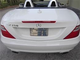 2013 Mercedes-Benz SLK250 (CC-1389851) for sale in Delray Beach, Florida