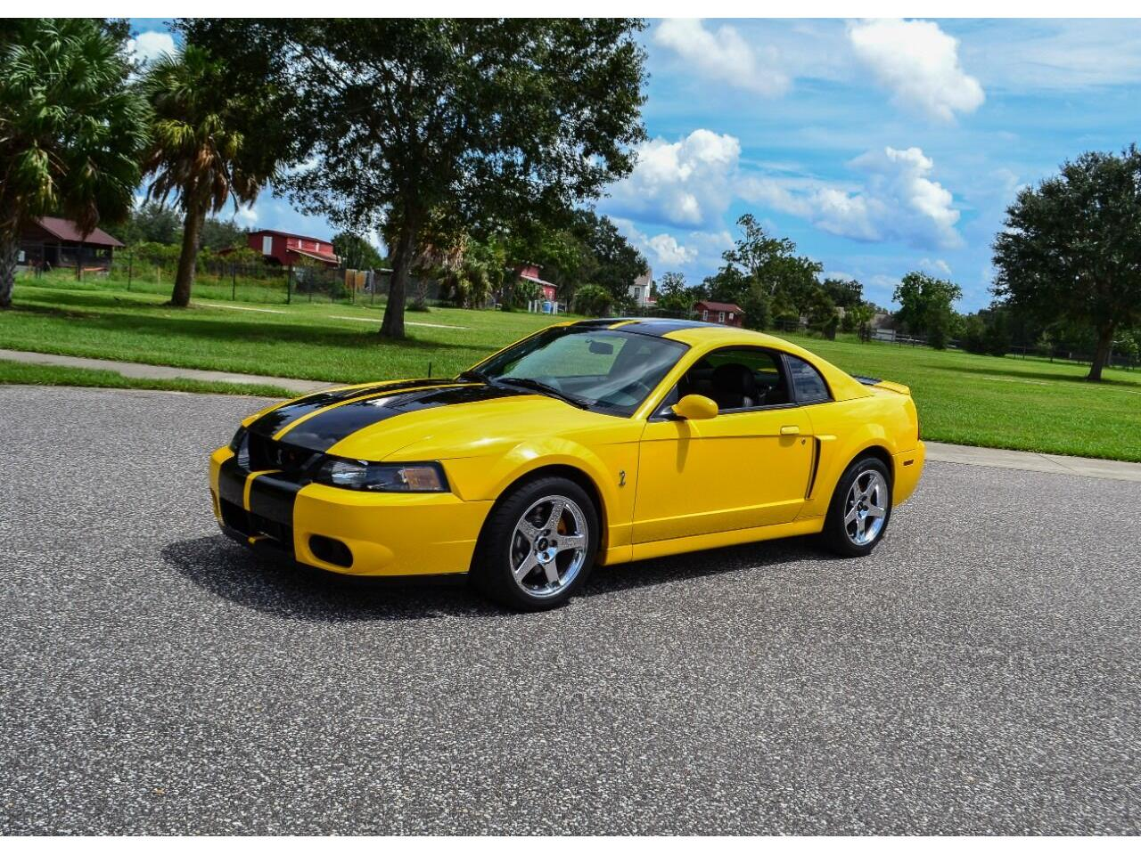 2004 Ford Mustang SVT Cobra (CC-1391708) for sale in Clearwater, Florida