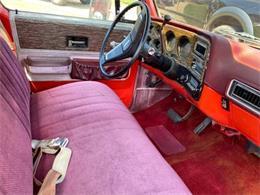 1976 Chevrolet C20 (CC-1391956) for sale in Cadillac, Michigan