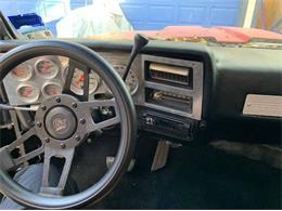 1982 Chevrolet C10 (CC-1392028) for sale in Cadillac, Michigan
