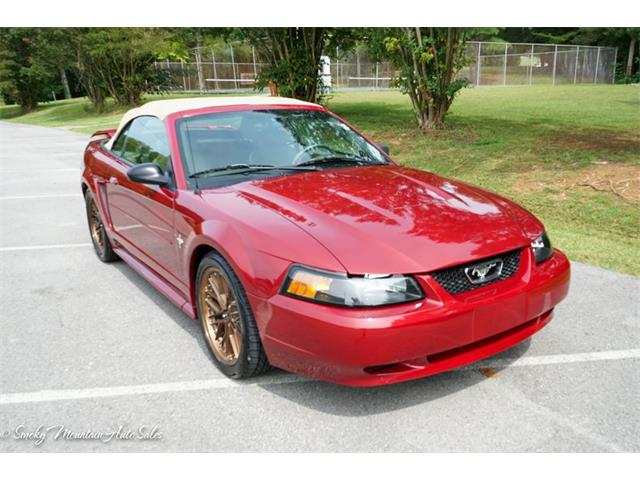 2003 Ford Mustang (CC-1392178) for sale in Lenoir City, Tennessee