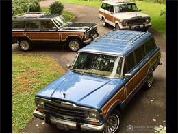 1991 Jeep Grand Wagoneer (CC-1392642) for sale in BEMUS POINT, New York