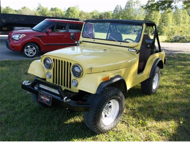 1974 Jeep CJ5 (CC-1392759) for sale in Cadillac, Michigan