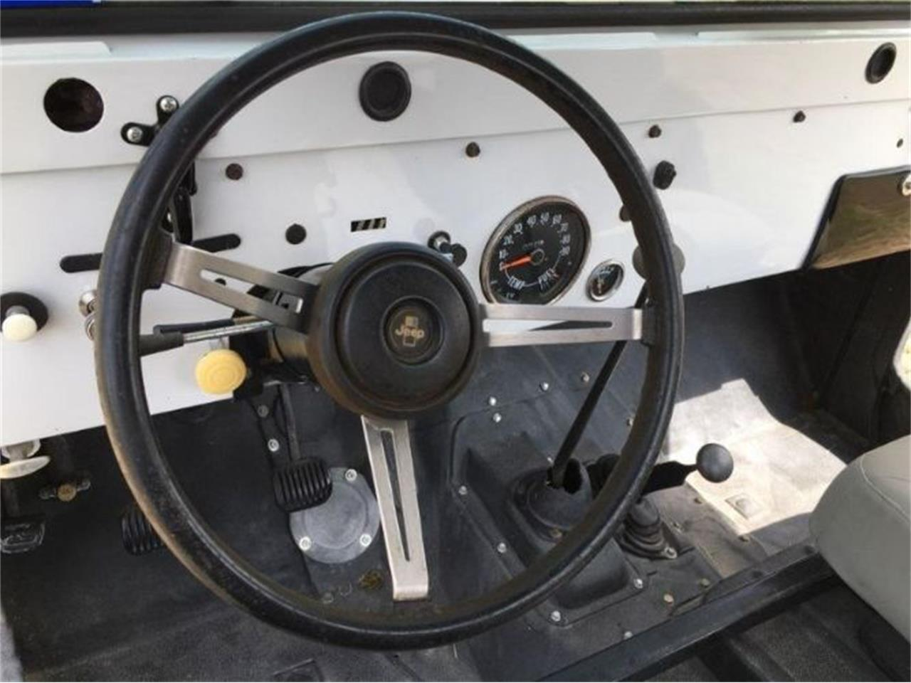 1973 Jeep CJ5 (CC-1392779) for sale in Cadillac, Michigan