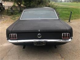 1965 Ford Mustang (CC-1392791) for sale in Cadillac, Michigan