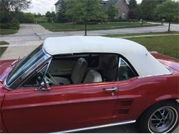 1967 Ford Mustang (CC-1392795) for sale in Cadillac, Michigan