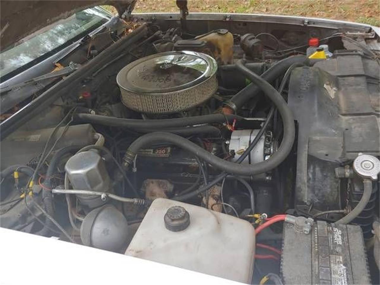 1979 Chevrolet El Camino (CC-1392799) for sale in Cadillac, Michigan