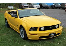 2006 Ford Mustang (CC-1392837) for sale in Hilton, New York