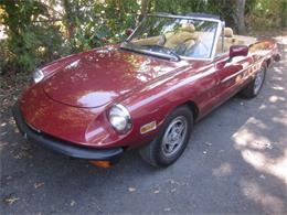 1982 Alfa Romeo 2000 Spider Veloce (CC-1393619) for sale in Stratford, Connecticut