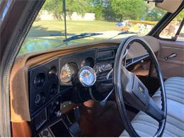 1978 Chevrolet Scottsdale (CC-1393788) for sale in Cadillac, Michigan