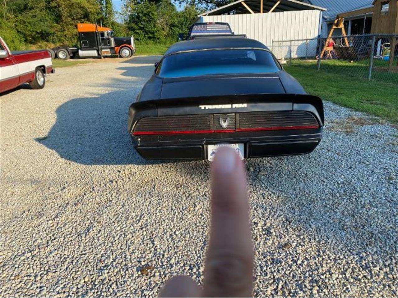 1981 Pontiac Firebird Trans Am (CC-1393827) for sale in Cadillac, Michigan
