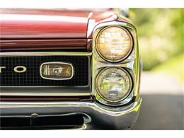 1966 Pontiac GTO (CC-1394162) for sale in Branford, Connecticut