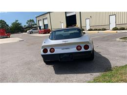1981 Chevrolet Corvette (CC-1394175) for sale in Palmetto, Florida