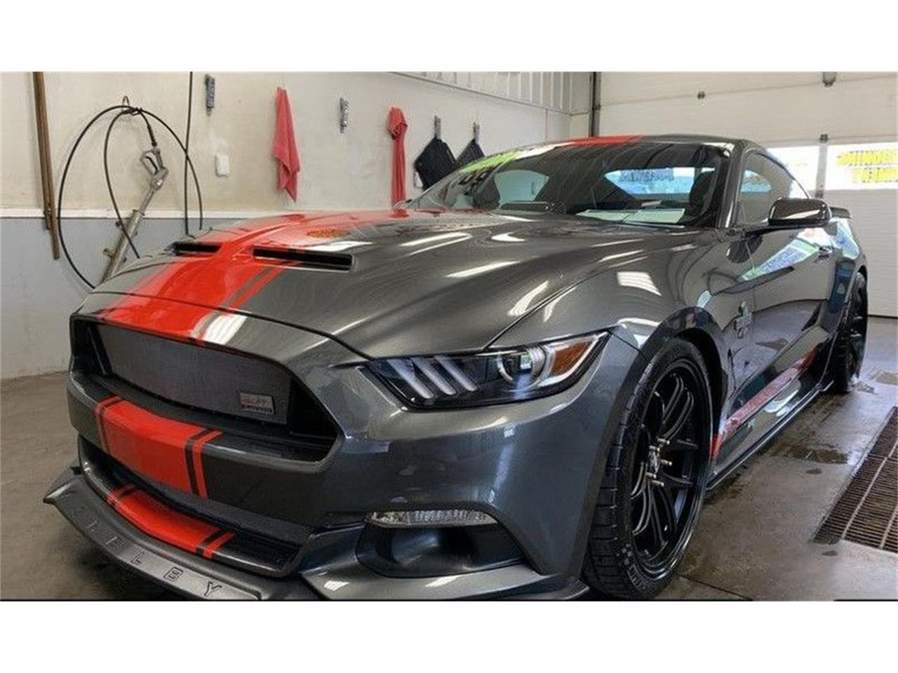 2017 Ford Mustang Shelby Super Snake (CC-1390074) for sale in Saratoga Springs, New York