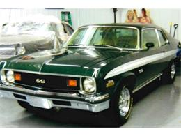 1973 Chevrolet Nova (CC-1390849) for sale in Carlisle, Pennsylvania