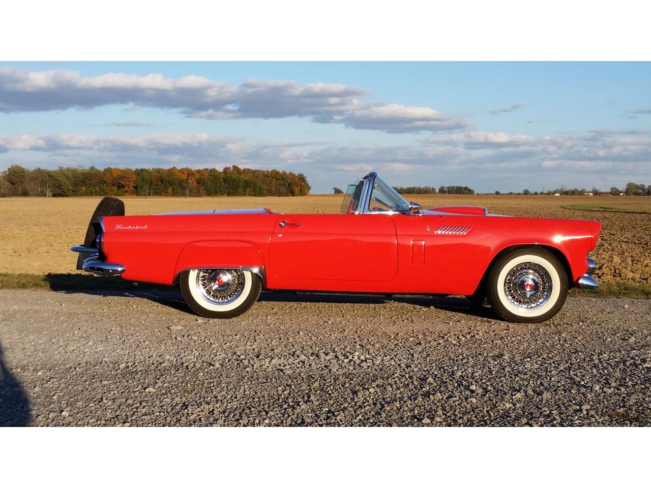 1956 Ford Thunderbird (CC-1390899) for sale in Lima, Ohio
