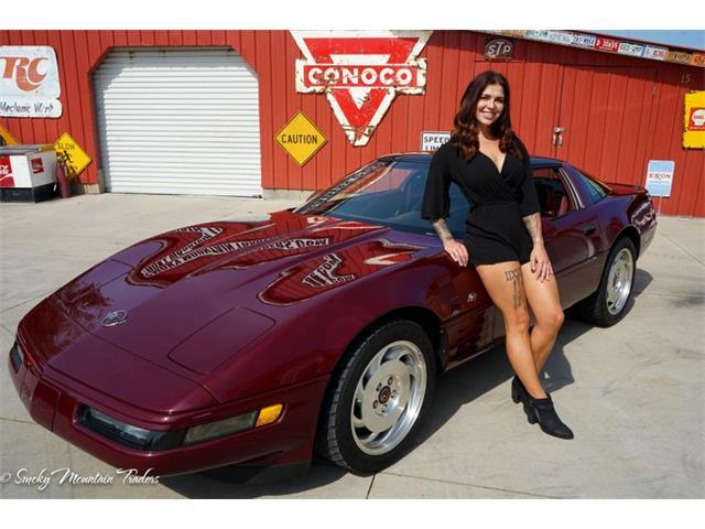 1993 Chevrolet Corvette (CC-1409573) for sale in Lenoir City, Tennessee