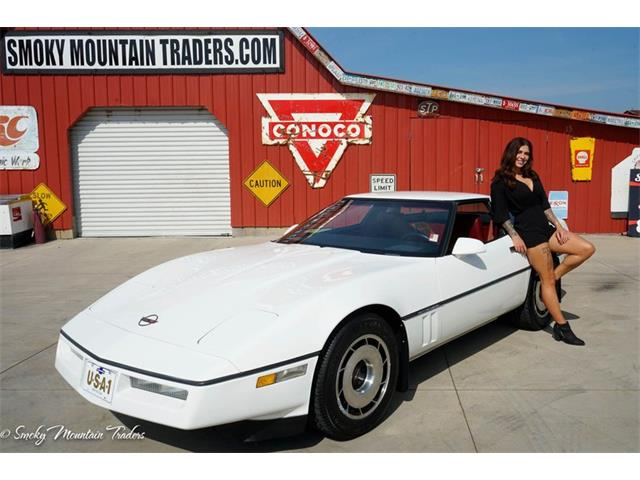 1984 Chevrolet Corvette (CC-1409828) for sale in Lenoir City, Tennessee