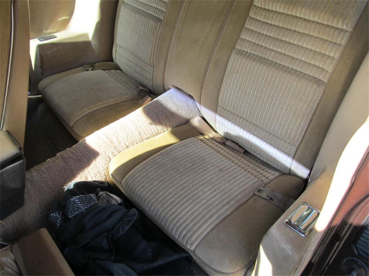 1981 Pontiac Firebird (CC-1409922) for sale in Ham Lake, Minnesota