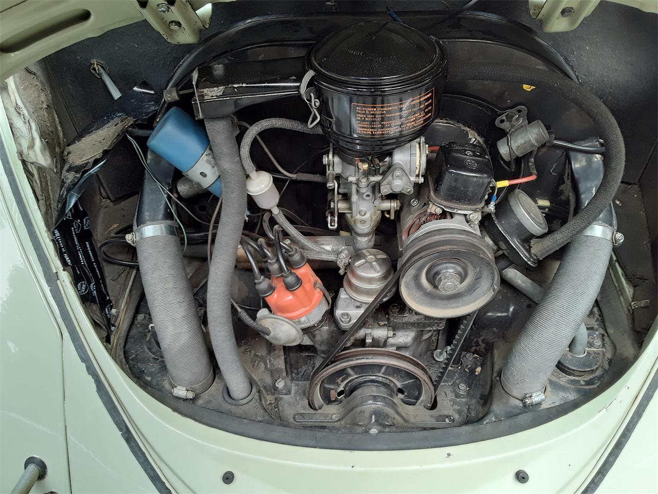 1964 Volkswagen Beetle (CC-1409999) for sale in Volcano, California