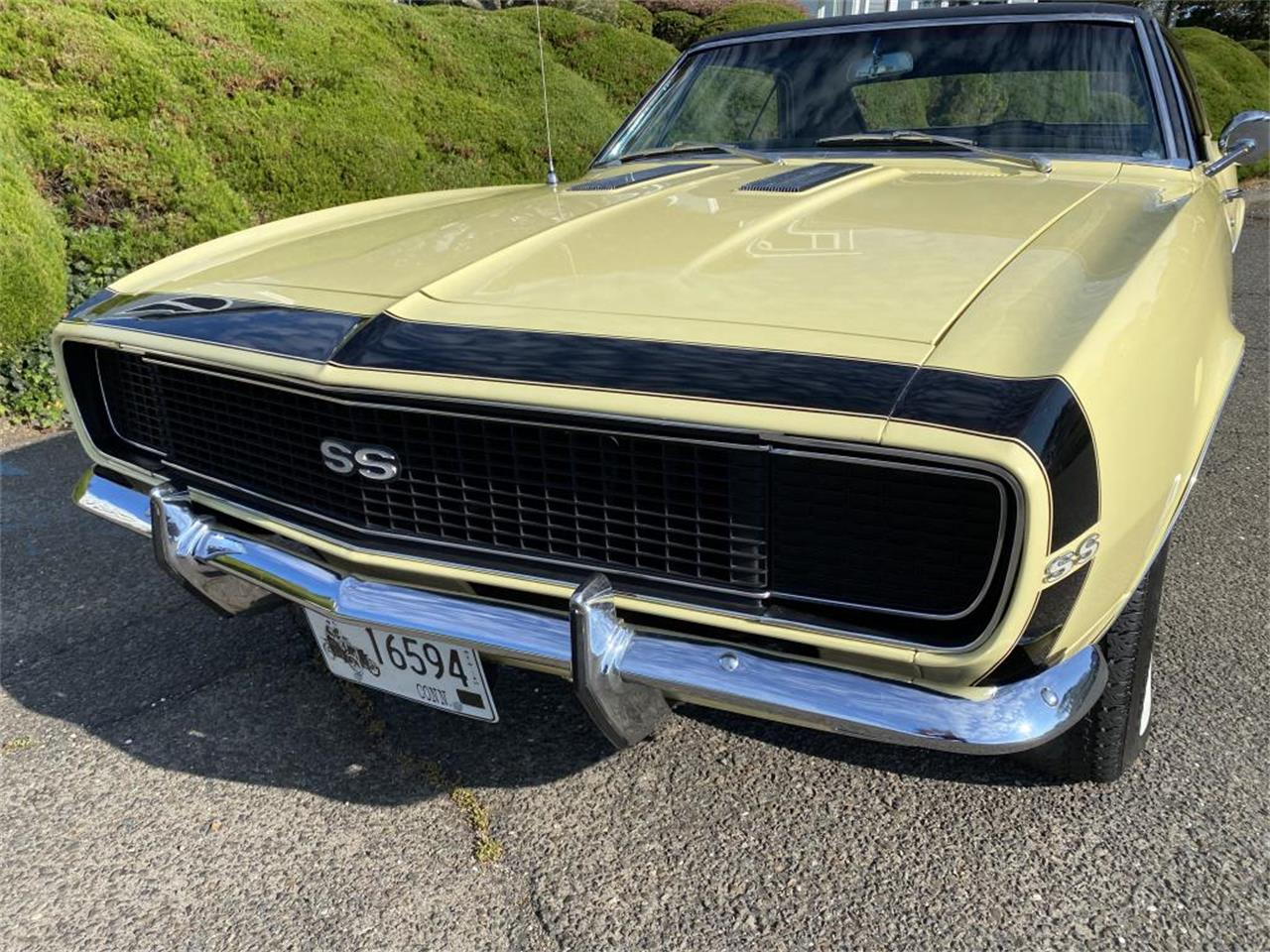 1967 Chevrolet Camaro (CC-1411309) for sale in Milford City, Connecticut
