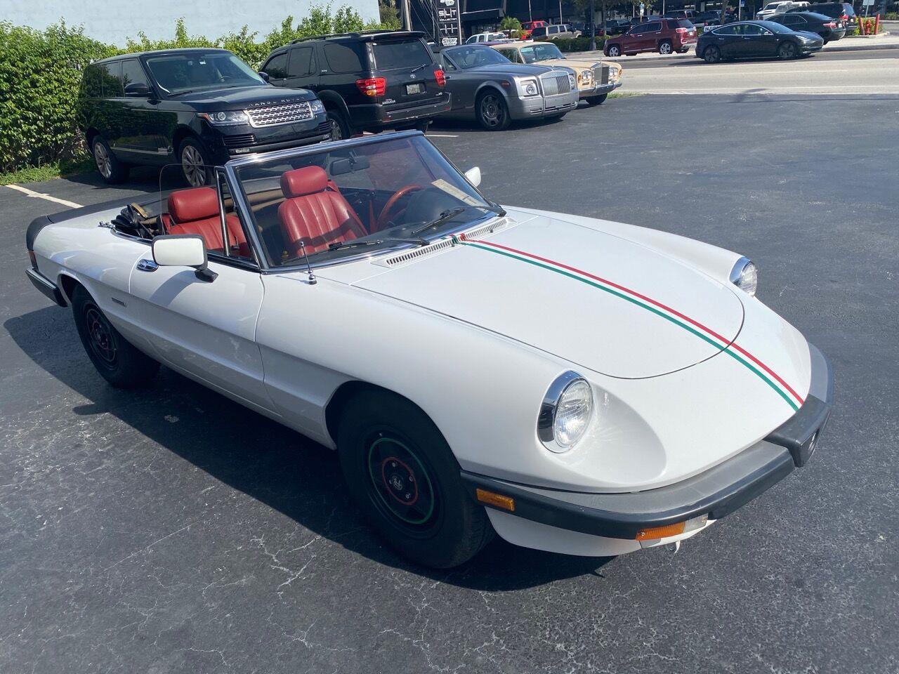 1985 Alfa Romeo Spider (CC-1411316) for sale in Fort Lauderdale, Florida