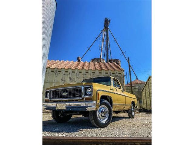 1973 Chevrolet C20 (CC-1411786) for sale in Cadillac, Michigan