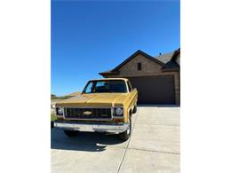 1973 Chevrolet C20 (CC-1411786) for sale in Cadillac, Michigan