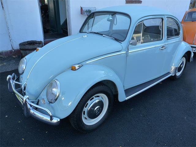 1966 Volkswagen Beetle (CC-1410186) for sale in New Canaan, Connecticut