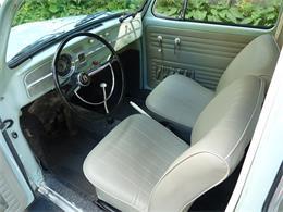1966 Volkswagen Beetle (CC-1410186) for sale in New Canaan, Connecticut