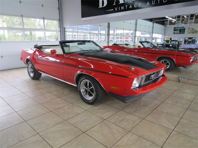 1973 Ford Mustang (CC-1411922) for sale in St. Charles, Illinois