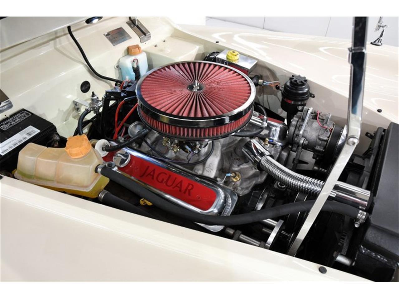 1951 Jaguar XK (CC-1412403) for sale in Volo, Illinois