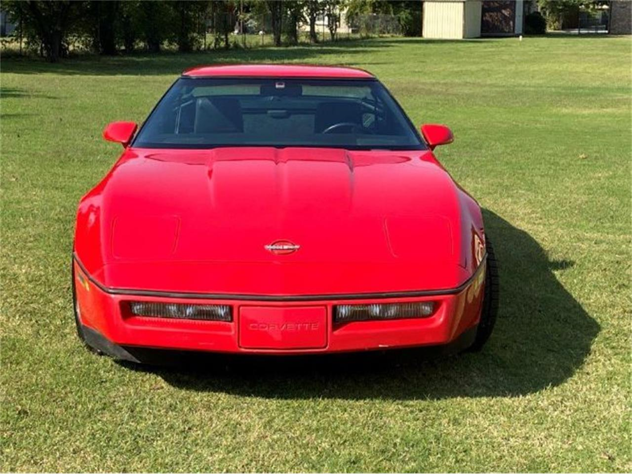 1984 Chevrolet Corvette (CC-1412428) for sale in Cadillac, Michigan