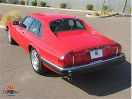 1985 Jaguar XJS (CC-1412511) for sale in Tempe, Arizona