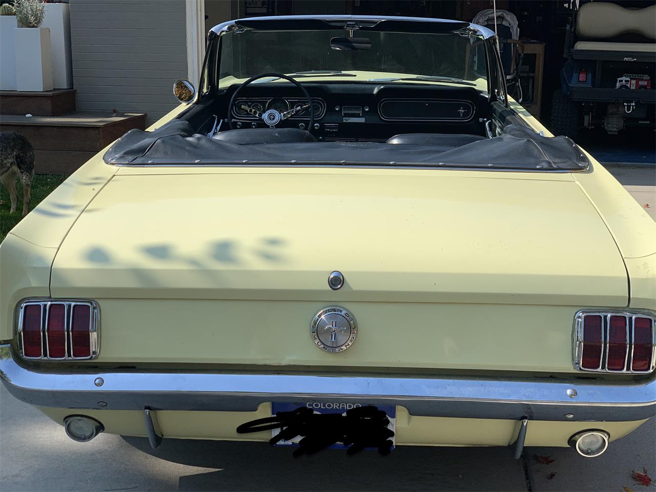 1966 Ford Mustang (CC-1412640) for sale in Denver, Colorado