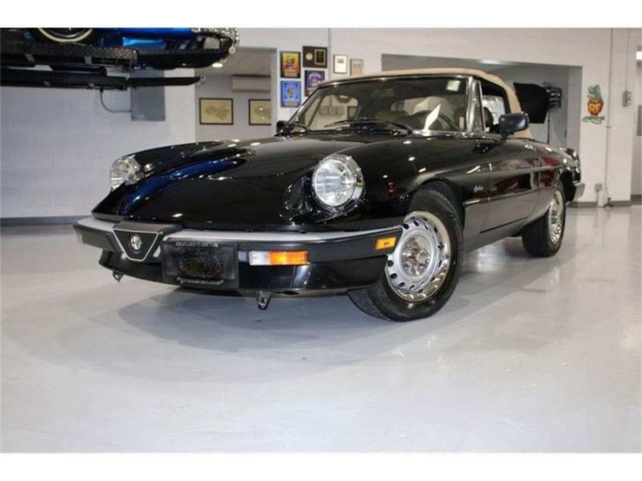1990 Alfa Romeo Graduate (CC-1413354) for sale in Punta Gorda, Florida