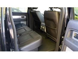 2013 Ford Raptor (CC-1413388) for sale in SLC, Utah